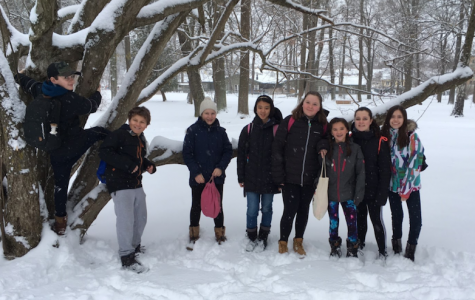 MYP Winter Sports Day 2017