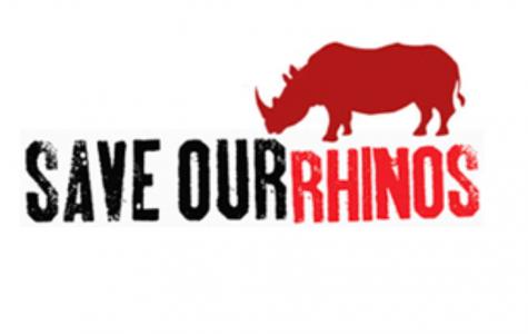 The Rhino Club
